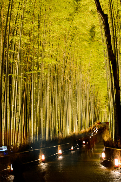 15-Second Exposure melts the moving crowd away a bit  --  Arashiyama Bamboo Forest (嵐山竹やぶ)  --  Kyoto, Japan  --  Copyright 2012 Jeffrey Friedl, http://regex.info/blog/  --  This photo is licensed to the public under the Creative Commons Attribution-NonCommercial 3.0 Unported License http://creativecommons.org/licenses/by-nc/3.0/ (non-commercial use is freely allowed if proper attribution is given, including a link back to this page on http://regex.info/ when used online)