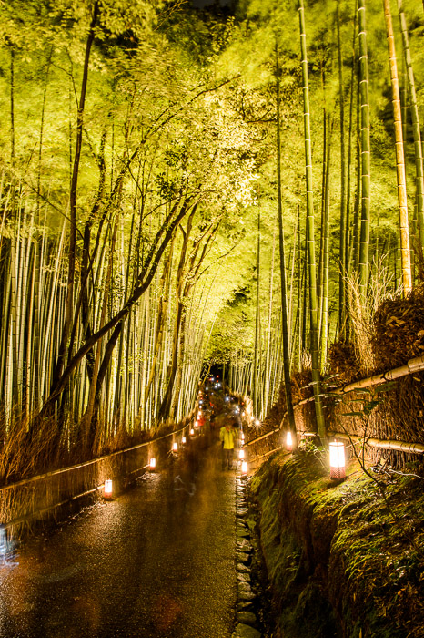 30-Second Exposure The photographer in yellow, like me, didn't move much  --  Arashiyama Bamboo Forest (嵐山竹やぶ)  --  Kyoto, Japan  --  Copyright 2012 Jeffrey Friedl, http://regex.info/blog/  --  This photo is licensed to the public under the Creative Commons Attribution-NonCommercial 3.0 Unported License http://creativecommons.org/licenses/by-nc/3.0/ (non-commercial use is freely allowed if proper attribution is given, including a link back to this page on http://regex.info/ when used online)