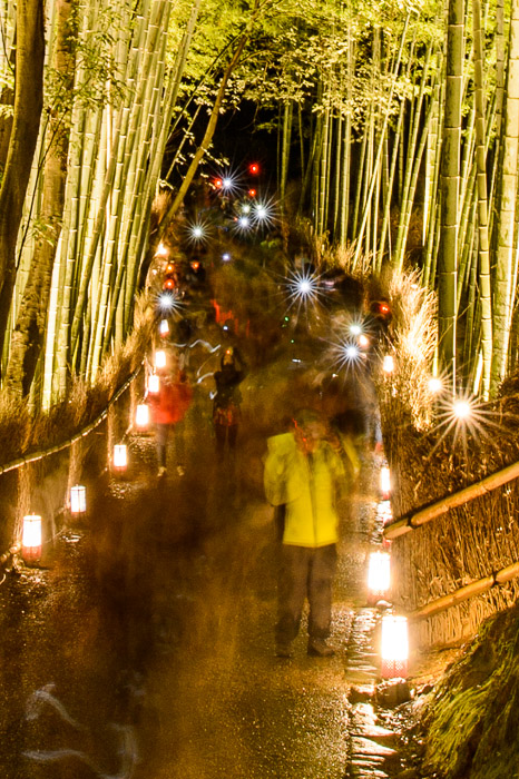 Flashes center crop from the shot above  --  Arashiyama Bamboo Forest (嵐山竹やぶ)  --  Kyoto, Japan  --  Copyright 2012 Jeffrey Friedl, http://regex.info/blog/  --  This photo is licensed to the public under the Creative Commons Attribution-NonCommercial 3.0 Unported License http://creativecommons.org/licenses/by-nc/3.0/ (non-commercial use is freely allowed if proper attribution is given, including a link back to this page on http://regex.info/ when used online)