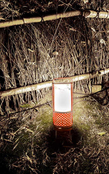 desktop background image of a Japanese lantern among the bamboo at the Arashiyama Bamboo Forest (嵐山竹やぶ), Kyoto Japan  --  Undetailed Photo of a highly detailed lantern  --  Arashiyama Bamboo Forest (嵐山竹やぶ)  --  Copyright 2012 Jeffrey Friedl, http://regex.info/blog/  --  This photo is licensed to the public under the Creative Commons Attribution-NonCommercial 3.0 Unported License http://creativecommons.org/licenses/by-nc/3.0/ (non-commercial use is freely allowed if proper attribution is given, including a link back to this page on http://regex.info/ when used online)