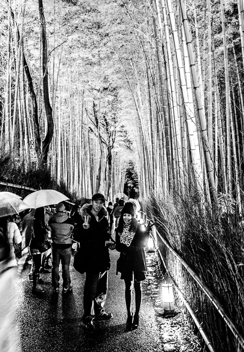Posed I took a photo of them with their camera, then this one with mine  --  Arashiyama Bamboo Forest (嵐山竹やぶ)  --  Kyoto, Japan  --  Copyright 2012 Jeffrey Friedl, http://regex.info/blog/  --  This photo is licensed to the public under the Creative Commons Attribution-NonCommercial 3.0 Unported License http://creativecommons.org/licenses/by-nc/3.0/ (non-commercial use is freely allowed if proper attribution is given, including a link back to this page on http://regex.info/ when used online)