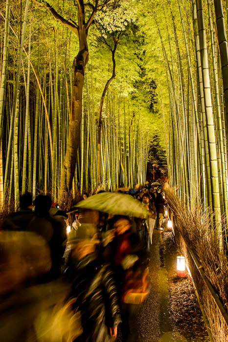 Rush of the Crowd  --  Arashiyama Bamboo Forest (嵐山竹やぶ)  --  Kyoto, Japan  --  Copyright 2012 Jeffrey Friedl, http://regex.info/blog/  --  This photo is licensed to the public under the Creative Commons Attribution-NonCommercial 3.0 Unported License http://creativecommons.org/licenses/by-nc/3.0/ (non-commercial use is freely allowed if proper attribution is given, including a link back to this page on http://regex.info/ when used online)