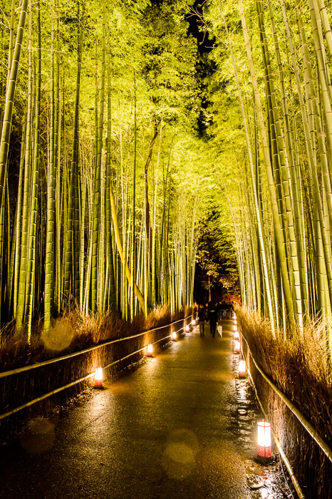 Brief Respite a minute and a half later  --  Arashiyama Bamboo Forest (嵐山竹やぶ)  --  Kyoto, Japan  --  Copyright 2012 Jeffrey Friedl, http://regex.info/blog/  --  This photo is licensed to the public under the Creative Commons Attribution-NonCommercial 3.0 Unported License http://creativecommons.org/licenses/by-nc/3.0/ (non-commercial use is freely allowed if proper attribution is given, including a link back to this page on http://regex.info/ when used online)