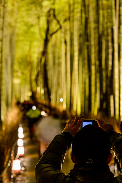 Arashiyama Bamboo Forest (嵐山竹やぶ)  --  Kyoto, Japan  --  Copyright 2012 Jeffrey Friedl, http://regex.info/blog/  --  This photo is licensed to the public under the Creative Commons Attribution-NonCommercial 3.0 Unported License http://creativecommons.org/licenses/by-nc/3.0/ (non-commercial use is freely allowed if proper attribution is given, including a link back to this page on http://regex.info/ when used online)