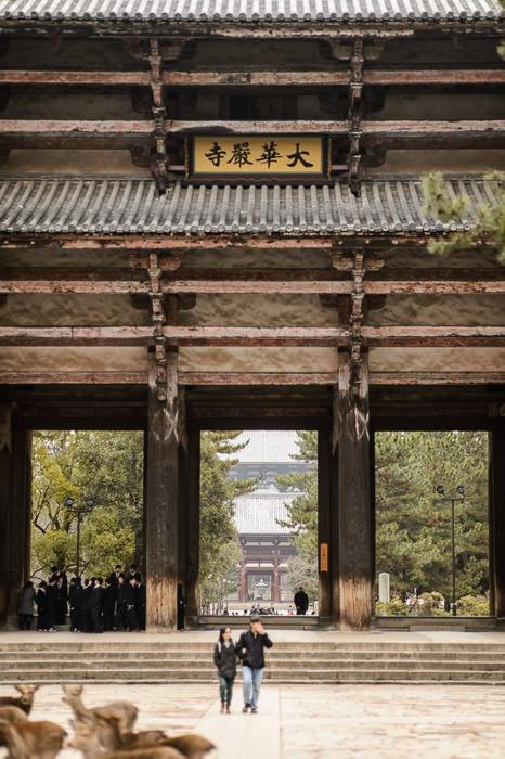 Todaiji in a Nutshell deer, school kids, big wooden buildings -- Todaiji (東大寺) -- Nara, Japan -- Copyright 2012 Jeffrey Friedl, http://regex.info/blog/