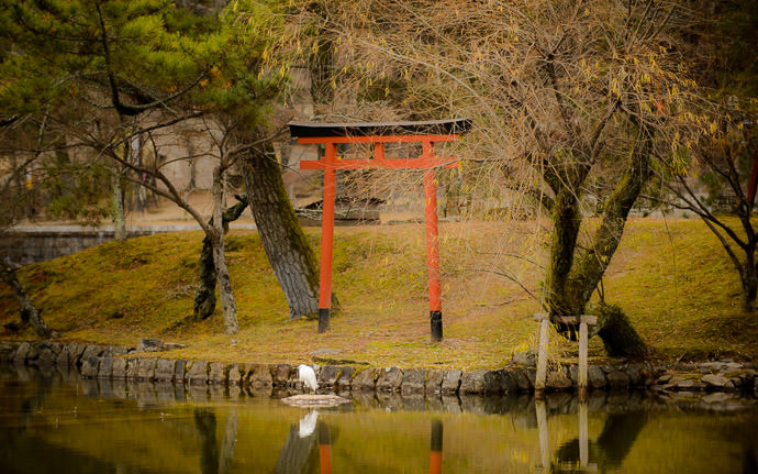 desktop background image of a small shrine gate reflected in a lake at the Todaiji Temple (東大寺), Nara Japan -- Small Lake Along the Way -- Todaiji (東大寺) -- Copyright 2012 Jeffrey Friedl, http://regex.info/blog/