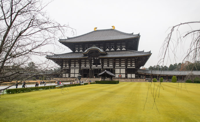 False-Color Shot playing around with this one, I colored the yellow/brown grass green -- Todaiji (東大寺) -- Nara, Japan -- Copyright 2012 Jeffrey Friedl, http://regex.info/blog/