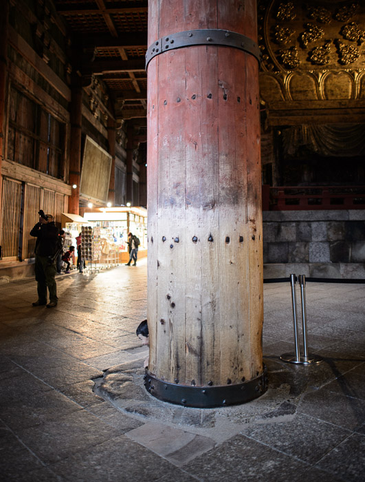Bottom Quarter of a massive 300-year-old support column at the Todaiji Temple in Nara, Japan )  --  Todaiji ()  --  Copyright 2012 Jeffrey Friedl, http://regex.info/blog/2013-01-13/2182  --  This photo is licensed to the public under the Creative Commons Attribution-NonCommercial 3.0 Unported License http://creativecommons.org/licenses/by-nc/3.0/ (non-commercial use is freely allowed if proper attribution is given, including a link back to this page on http://regex.info/ when used online)
