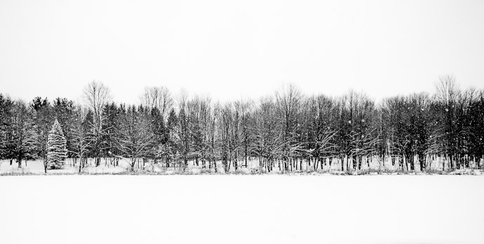 Ohio Winter  --  Rootstown, OH, USA  --  Copyright 2012 Jeffrey Friedl, http://regex.info/blog/  --  This photo is licensed to the public under the Creative Commons Attribution-NonCommercial 3.0 Unported License http://creativecommons.org/licenses/by-nc/3.0/ (non-commercial use is freely allowed if proper attribution is given, including a link back to this page on http://regex.info/ when used online)