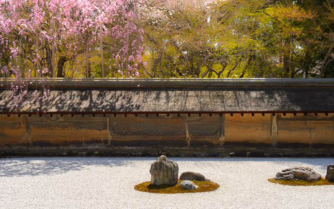 desktop background image of the rock garden at the Ryouanji Temple (龍安寺), Kyoto Japan, during cherry-blossom season -- Rocks as useful as dead disk drives -- Ryouanji Temple (龍安寺) -- Copyright 2013 Jeffrey Friedl, http://regex.info/blog/ -- This photo is licensed to the public under the Creative Commons Attribution-NonCommercial 4.0 International License http://creativecommons.org/licenses/by-nc/4.0/ (non-commercial use is freely allowed if proper attribution is given, including a link back to this page on http://regex.info/ when used online)