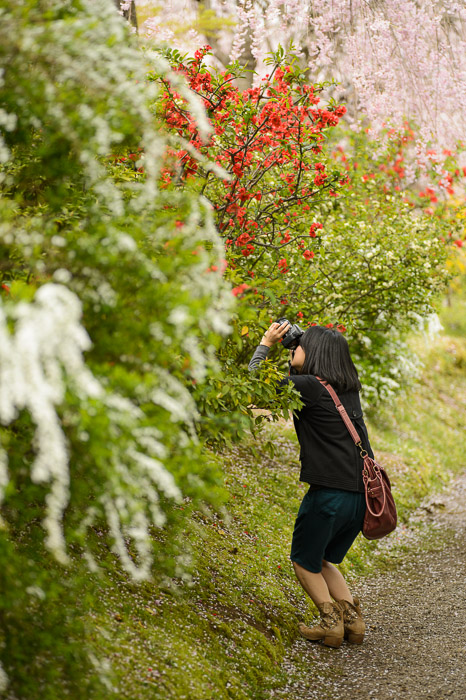 Photographer's Crouch -- The Haradanien Garden () -- Kyoto, Japan -- Copyright 2013 Jeffrey Friedl, http://regex.info/blog/ -- This photo is licensed to the public under the Creative Commons Attribution-NonCommercial 3.0 Unported License http://creativecommons.org/licenses/by-nc/3.0/ (non-commercial use is freely allowed if proper attribution is given, including a link back to this page on http://regex.info/ when used online)
