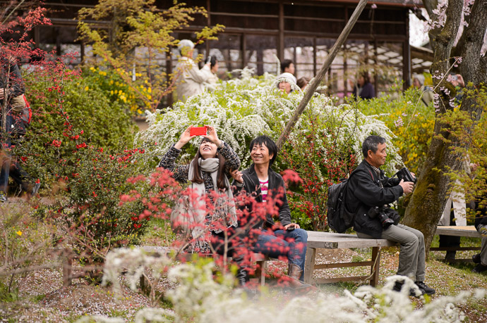 All Smiles -- The Haradanien Garden (原谷苑) -- Kyoto, Japan -- Copyright 2013 Jeffrey Friedl, http://regex.info/blog/ -- This photo is licensed to the public under the Creative Commons Attribution-NonCommercial 3.0 Unported License http://creativecommons.org/licenses/by-nc/3.0/ (non-commercial use is freely allowed if proper attribution is given, including a link back to this page on http://regex.info/ when used online)