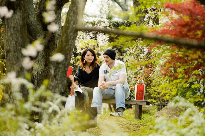 Found Them -- The Haradanien Garden (原谷苑) -- Kyoto, Japan -- Copyright 2013 Jeffrey Friedl, http://regex.info/blog/