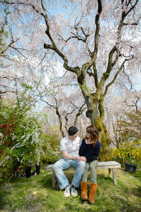 The Haradanien Garden (原谷苑) -- Kyoto, Japan -- Copyright 2013 Jeffrey Friedl, http://regex.info/blog/