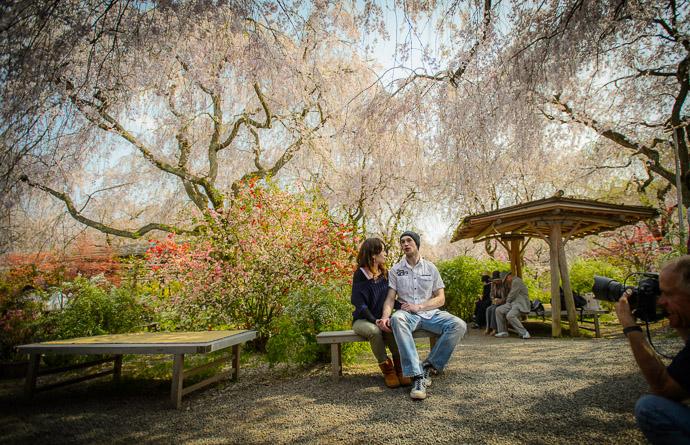 Paul in Action -- The Haradanien Garden (原谷苑) -- Kyoto, Japan -- Copyright 2013 Jeffrey Friedl, http://regex.info/blog/
