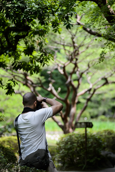 Aeron and the Tree -- Heian Shrine (平安神宮) -- Kyoto, Japan -- Copyright 2013 Jeffrey Friedl, http://regex.info/blog/