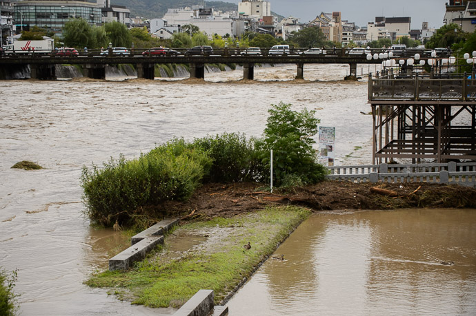 Debris -- Kamo River (鴨川) -- Kyoto, Japan -- Copyright 2013 Jeffrey Friedl, http://regex.info/blog/ -- This photo is licensed to the public under the Creative Commons Attribution-NonCommercial 3.0 Unported License http://creativecommons.org/licenses/by-nc/3.0/ (non-commercial use is freely allowed if proper attribution is given, including a link back to this page on http://regex.info/ when used online)