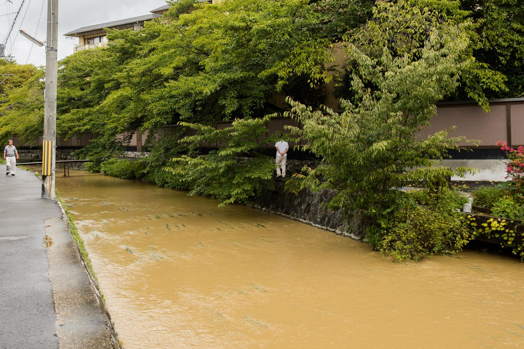 水位 白川
