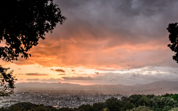 desktop background image of a sunset as seen from the Shogunzuka Overlook, Kyoto Japan (将軍塚、京都市) -- Fading Dully Into That Gray Night -- Shogunzuka Overlook (将軍塚) -- Copyright 2013 Jeffrey Friedl, http://regex.info/blog/ -- This photo is licensed to the public under the Creative Commons Attribution-NonCommercial 3.0 Unported License http://creativecommons.org/licenses/by-nc/3.0/ (non-commercial use is freely allowed if proper attribution is given, including a link back to this page on http://regex.info/ when used online)