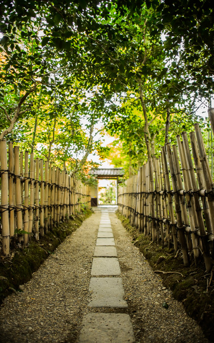 desktop background image of fall-foliage scenes at the Enrian Temple (厭離庵) in Kyoto Japan -- Path To The Enrian Temple (厭離庵) -- Enrian Temple (厭離庵) -- Copyright 2013 Jeffrey Friedl, http://regex.info/blog/ -- This photo is licensed to the public under the Creative Commons Attribution-NonCommercial 3.0 Unported License http://creativecommons.org/licenses/by-nc/3.0/ (non-commercial use is freely allowed if proper attribution is given, including a link back to this page on http://regex.info/ when used online)