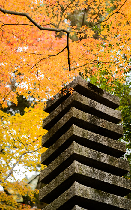 desktop background image of fall-foliage scenes at the Takiguchi-dera Temple (滝口寺) in Kyoto Japan -- Slightly Jostled -- Takiguchi-dera Temple (滝口寺) -- Copyright 2013 Jeffrey Friedl, http://regex.info/blog/ -- This photo is licensed to the public under the Creative Commons Attribution-NonCommercial 3.0 Unported License http://creativecommons.org/licenses/by-nc/3.0/ (non-commercial use is freely allowed if proper attribution is given, including a link back to this page on http://regex.info/ when used online)