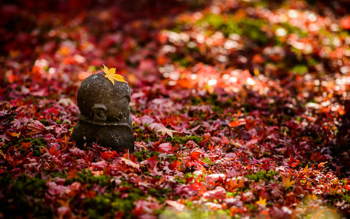 desktop background image of a fall-foliage scene at the Enkoji Temple (円光寺), Kyoto Japan -- Thinking Cap at the Enkoji Temple (円光寺), Kyoto Japan -- Enkoji Temple (円光寺) -- Copyright 2013 Jeffrey Friedl, http://regex.info/blog/
