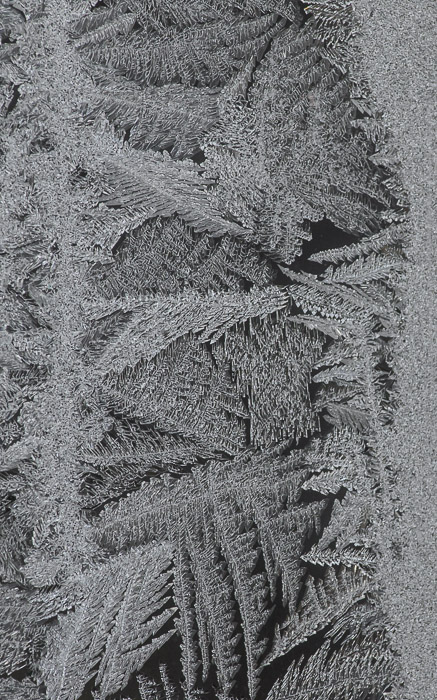 desktop background image of a frost pattern on a window in the -10F (-23C) cold of an Ohio winter -- Parallels -- Copyright 2014 Jeffrey Friedl, http://regex.info/blog/ -- This photo is licensed to the public under the Creative Commons Attribution-NonCommercial 4.0 International License http://creativecommons.org/licenses/by-nc/4.0/ (non-commercial use is freely allowed if proper attribution is given, including a link back to this page on http://regex.info/ when used online)