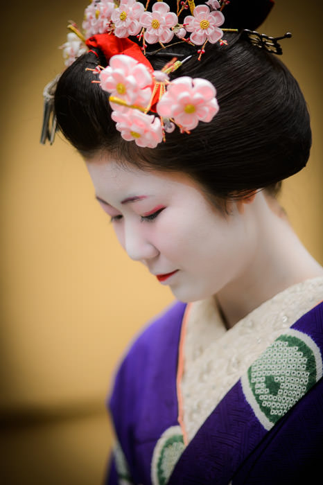 Demure -- Gion -- Kyoto, Japan -- Copyright 2014 Jeffrey Friedl, http://regex.info/blog/
