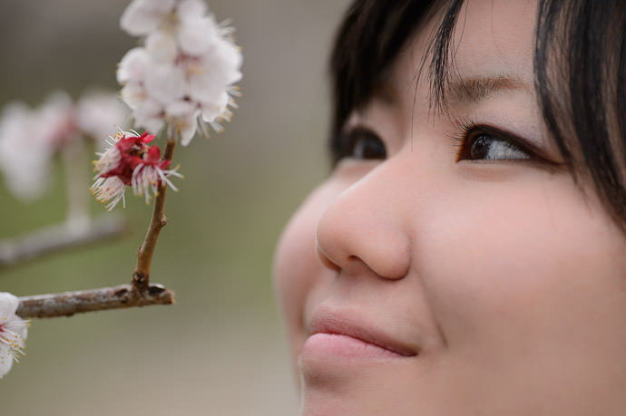 Up Close and Personal Ikuko and plum blossoms -- Kitano Tenman-gu Shrine (北野天満宮) -- Kyoto, Japan -- Copyright 2014 Jeffrey Friedl, http://regex.info/blog/