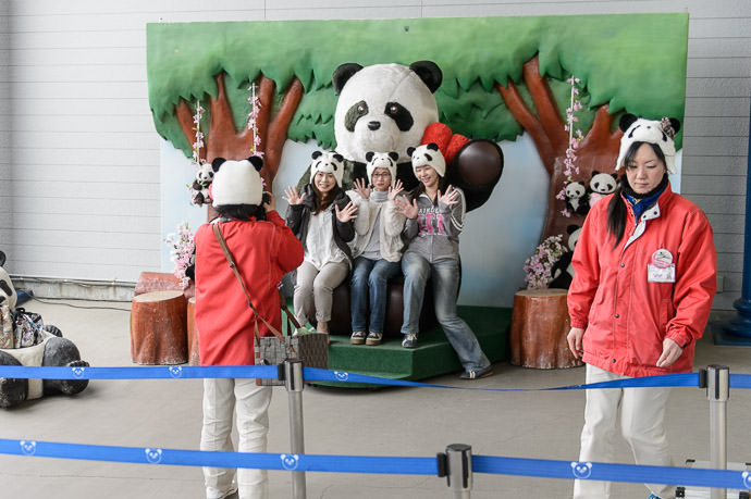 Panda-Hat Photo Opp Service パンダ帽子の撮影場 -- Adventure World -- Shirahama, Wakayama, Japan -- Copyright 2014 Jeffrey Friedl, http://regex.info/blog/