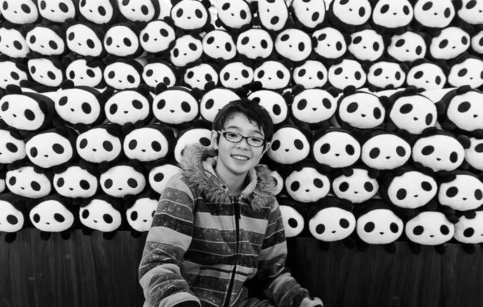 Lots of Pandas in Shirahama, Japan 白浜ではパンダが多い -- Adventure World -- Nishimuro, Wakayama, Japan -- Copyright 2014 Jeffrey Friedl, http://regex.info/blog/