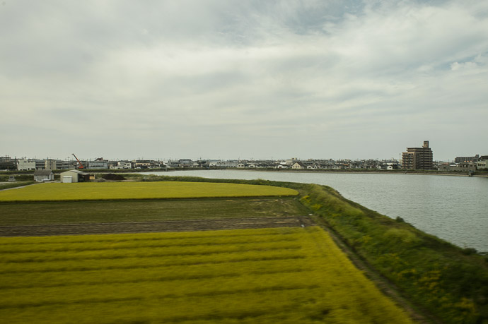 Rice and River an extremely typical view — Akashi City — 273 kph (170 mph) -- Akashi, Hyogo, Japan -- Copyright 2014 Jeffrey Friedl, http://regex.info/blog/ -- This photo is licensed to the public under the Creative Commons Attribution-NonCommercial 4.0 International License http://creativecommons.org/licenses/by-nc/4.0/ (non-commercial use is freely allowed if proper attribution is given, including a link back to this page on http://regex.info/ when used online)