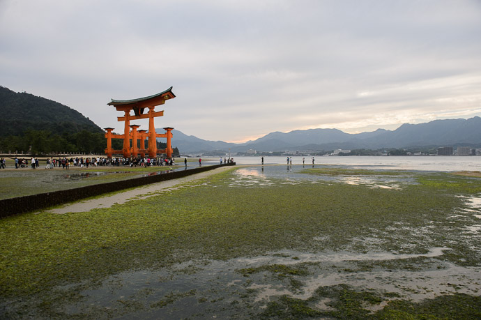 Walkable (Sort Of) Itsukushima Shrine (厳島神社) -- Itsukushima Shrine (厳島神社) -- Miyajima, Hiroshima, Japan -- Copyright 2014 Jeffrey Friedl, http://regex.info/blog/ -- This photo is licensed to the public under the Creative Commons Attribution-NonCommercial 4.0 International License http://creativecommons.org/licenses/by-nc/4.0/ (non-commercial use is freely allowed if proper attribution is given, including a link back to this page on http://regex.info/ when used online)