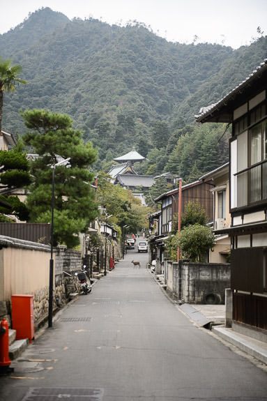 Back Streets -- Daisho-in Temple (大聖院) -- Miyajima, Hiroshima, Japan -- Copyright 2014 Jeffrey Friedl, http://regex.info/blog/