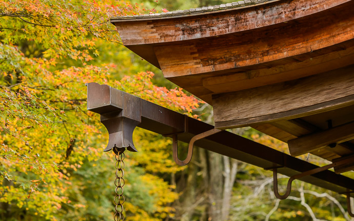 "desktop background image of fall-foliage temple-architecture detail at the Kosanji (Kozanji) Temple (高山寺), Kyoto Japan -- Detail I love this kind of roof, and the "" rain chain "" ( kusaridori ; 鎖樋) -- Kosanji (Kozanji) Temple (高山寺) -- Copyright 2014 Jeffrey Friedl, http://regex.info/blog/ -- This photo is licensed to the public under the Creative Commons Attribution-NonCommercial 4.0 International License http://creativecommons.org/licenses/by-nc/4.0/ (non-commercial use is freely allowed if proper attribution is given, including a link back to this page on http://regex.info/ when used online)"