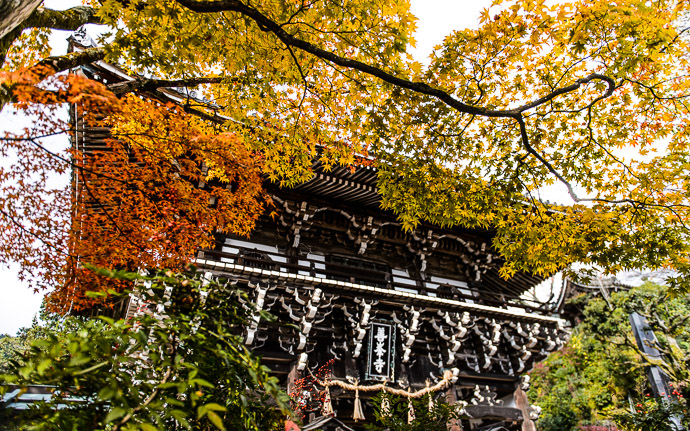 desktop background image of a fall-foliage scene at the Yoshiminedera Temple (善峯寺), Kyoto Japan -- Entrance to the Yoshiminedera Temple 善峯寺の正門 -- Yoshiminedera Temple (善峯寺) -- Copyright 2014 Jeffrey Friedl, http://regex.info/blog/2014-11-18/2485 -- This photo is licensed to the public under the Creative Commons Attribution-NonCommercial 4.0 International License http://creativecommons.org/licenses/by-nc/4.0/ (non-commercial use is freely allowed if proper attribution is given, including a link back to this page on http://regex.info/ when used online)