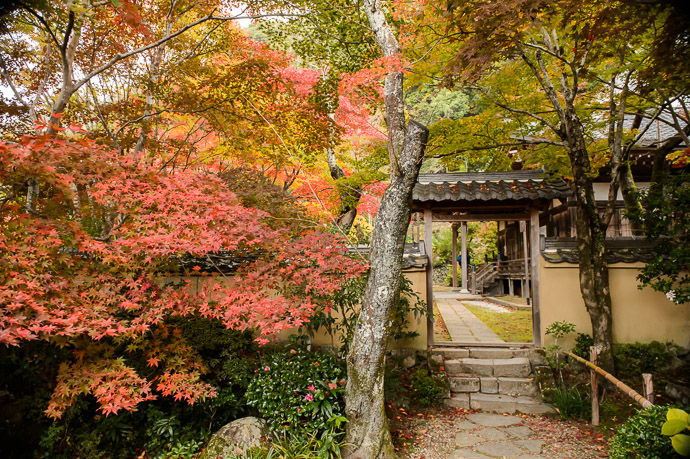"""Entrance to the Shojiji Temple (AKA """" Hanadera """" ) 勝持寺 / 花の寺 Kyoto Japan -- Shojiji Temple (Hanadera) (勝持寺 / 花の寺) -- Copyright 2014 Jeffrey Friedl, http://regex.info/blog/ -- This photo is licensed to the public under the Creative Commons Attribution-NonCommercial 4.0 International License http://creativecommons.org/licenses/by-nc/4.0/ (non-commercial use is freely allowed if proper attribution is given, including a link back to this page on http://regex.info/ when used online)"""