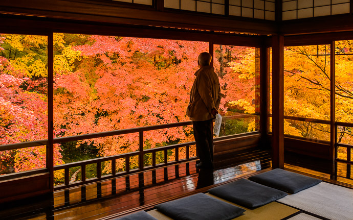 desktop background image of gorgeous fall colors at the Rurikoin Temple (瑠璃光院), Kyoto Japan -- A Moment of Quiet Introspection at the Rurikoin Temple (瑠璃光院), Kyoto Japan -- Rurikoin Temple (瑠璃光院) -- Copyright 2014 Jeffrey Friedl, http://regex.info/blog/ -- This photo is licensed to the public under the Creative Commons Attribution-NonCommercial 4.0 International License http://creativecommons.org/licenses/by-nc/4.0/ (non-commercial use is freely allowed if proper attribution is given, including a link back to this page on http://regex.info/ when used online)