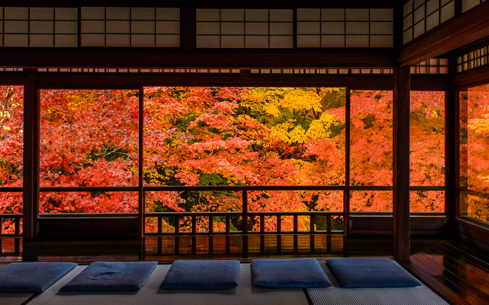 desktop background image of gorgeous fall colors at the Rurikoin Temple (瑠璃光院), Kyoto Japan -- Your Seat Awaits this is absolutely what you'll find if you visit this weekend -- Rurikoin Temple (瑠璃光院) -- Copyright 2014 Jeffrey Friedl, http://regex.info/blog/ -- This photo is licensed to the public under the Creative Commons Attribution-NonCommercial 4.0 International License http://creativecommons.org/licenses/by-nc/4.0/ (non-commercial use is freely allowed if proper attribution is given, including a link back to this page on http://regex.info/ when used online)