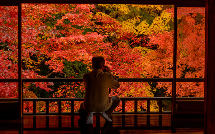 desktop background image of gorgeous fall colors at the Rurikoin Temple (瑠璃光院), Kyoto Japan -- Nabbing a Quick Snap -- Rurikoin Temple (瑠璃光院) -- Copyright 2014 Jeffrey Friedl, http://regex.info/blog/ -- This photo is licensed to the public under the Creative Commons Attribution-NonCommercial 4.0 International License http://creativecommons.org/licenses/by-nc/4.0/ (non-commercial use is freely allowed if proper attribution is given, including a link back to this page on http://regex.info/ when used online)