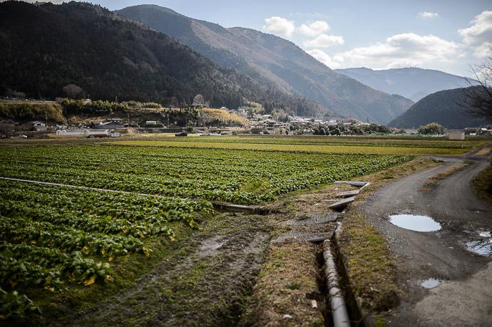 Ohara Countryside (taken 1-handed at 30kph) -- Kyoto, Japan -- Copyright 2015 Jeffrey Friedl, http://regex.info/blog/