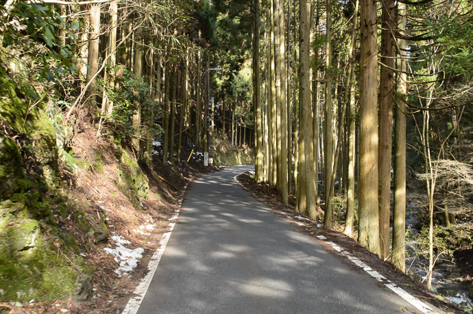 6km of Increasingly-Steep This until the pass 10:07am (16.8km), taken one-handed while riding at 10 km/h 峠まで、坂はだんだんきつくなる6キロです -- Kyoto, Japan -- Copyright 2015 Jeffrey Friedl, http://regex.info/blog/ -- This photo is licensed to the public under the Creative Commons Attribution-NonCommercial 4.0 International License http://creativecommons.org/licenses/by-nc/4.0/ (non-commercial use is freely allowed if proper attribution is given, including a link back to this page on http://regex.info/ when used online)