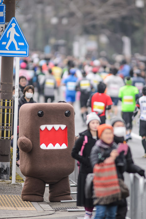 Domo-Kun NTT (Japanese National Television) Mascot -- Kyoto, Japan -- Copyright 2015 Jeffrey Friedl, http://regex.info/blog/