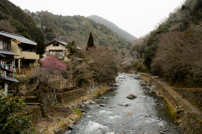 Little Village Stream with some plum blossoms at left -- Kyoto, Japan -- Copyright 2015 Jeffrey Friedl, http://regex.info/blog/