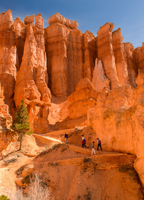 This Morning hike in Bryce Canyon National Park 今朝: ブライスキャニオン 国立公園 のハイキング -- Bryce, Utah, United States -- Copyright 2015 Jeffrey Friedl, http://regex.info/blog/