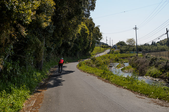Lovely Countryside 10:05am - taken while cycling at 28 km/h 気持ち良い部分 -- Otsu, Shiga, Japan -- Copyright 2015 Jeffrey Friedl, http://regex.info/blog/