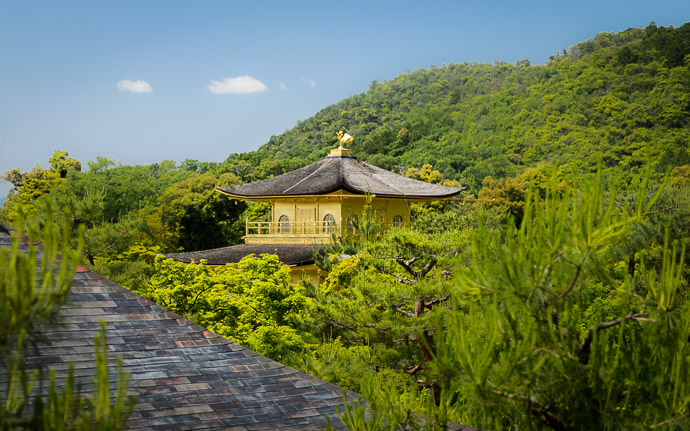 desktop background image of the Golden Pavilion (金閣寺, Kyoto Japan) poking up above the trees -- Sort of Freaky View of the top of the Golden Pavilion (金閣寺) poking above the trees -- Kinkakuji (金閣寺) -- Copyright 2015 Jeffrey Friedl, http://regex.info/blog/ -- This photo is licensed to the public under the Creative Commons Attribution-NonCommercial 4.0 International License http://creativecommons.org/licenses/by-nc/4.0/ (non-commercial use is freely allowed if proper attribution is given, including a link back to this page on http://regex.info/ when used online)
