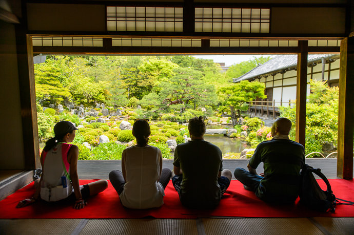 Enjoying the Garden -- Toji-in Temple (等持院) -- Kyoto, Japan -- Copyright 2015 Jeffrey Friedl, http://regex.info/blog/