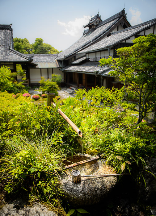 Toji-in Temple (等持院) -- Kyoto, Japan -- Copyright 2015 Jeffrey Friedl, http://regex.info/blog/ -- This photo is licensed to the public under the Creative Commons Attribution-NonCommercial 4.0 International License http://creativecommons.org/licenses/by-nc/4.0/ (non-commercial use is freely allowed if proper attribution is given, including a link back to this page on http://regex.info/ when used online)