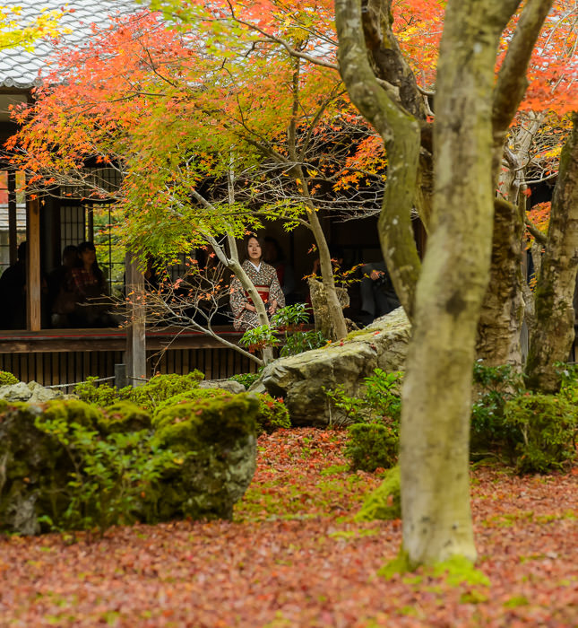Enkoji Temple (円光寺) -- Kyoto, Japan -- Copyright 2015 Jeffrey Friedl, http://regex.info/blog/